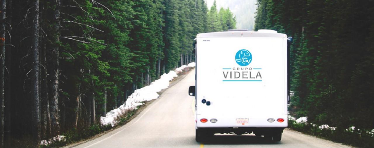 Grupo-Videla