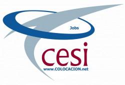 Cesi Consulting