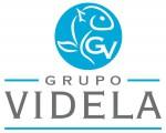 Grupo Videla